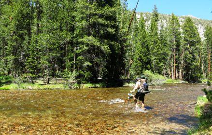 490 S Keyes to Evolution Valley - Evolution creek