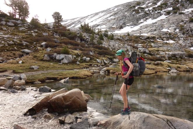 Leki Carbon Laky hiking poles