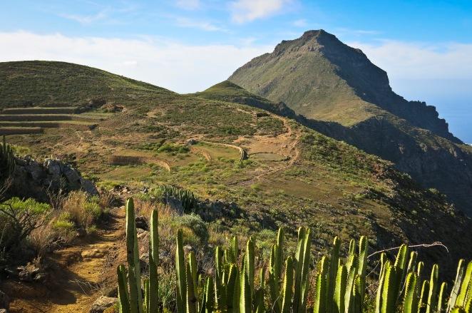 Tenerife19