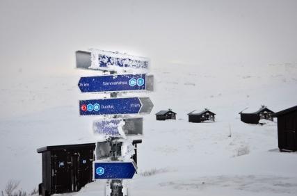 sarek-ski-tour-108