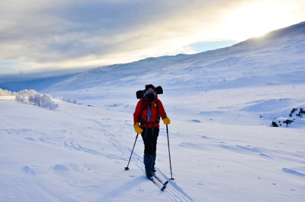 sarek-ski-tour-116