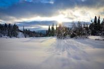 sarek-ski-tour-12