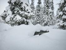 sarek-ski-tour-27