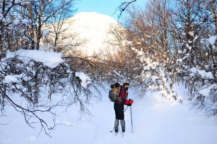 sarek-ski-tour-57