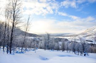 sarek-ski-tour-87