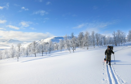 sarek-ski-tour-96