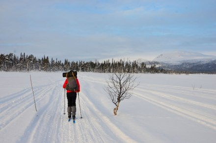 sarek-ski-tour-day9k